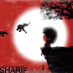 SHARIF - SOBRE LOS MARGENES...