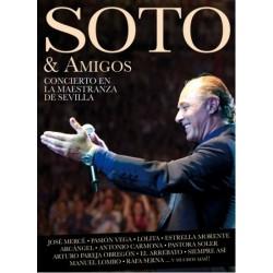 JOSE MANUEL SOTO - SOTO &...