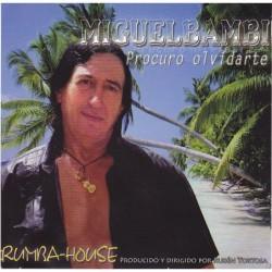 Miguel Bambi - Procuro...