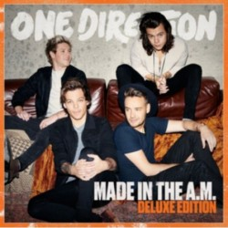 ONE DIRECTION - MADE IN THE...