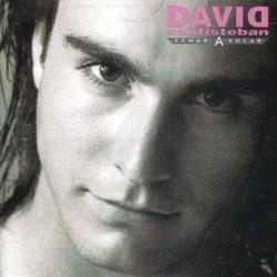 DAVID SANTISTEBAN - ECHAR A...
