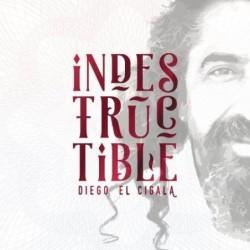 DIEGO EL CIGALA -...