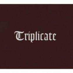BOB DYLAN - TRIPLICATE  (3Cd)
