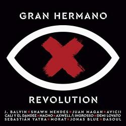 GRAN HERMANO REVOLUTION...