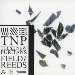 THESE NEW PURITANS - FIELD...