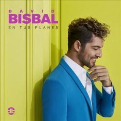David Bisbal - En Tus...