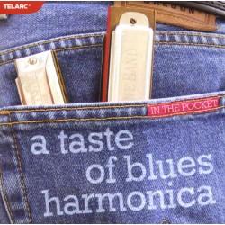 A TASTE OF BLUES HARMONICA...
